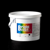 高輝度反射性水性塗料 ブライトコート 黒 Nタイプ 5kg