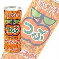 昔なつかしい つぶつぶオレンジジュース1ケース(250g×30本入り)