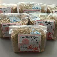 ご家庭の炊飯器で簡単に炊ける「無洗米 卑弥呼の玄米」 1kg×6