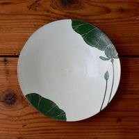 大谷桃子 緑ハス縁取り8寸皿