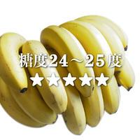 身崩れしない特別加工!萬点バナナ(糖度24〜25度) 品質保証付き アタゴ屈折糖度計測定済み