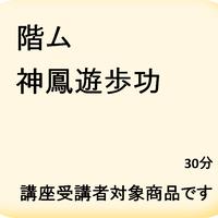 階ム 神鳳遊歩功 microSD