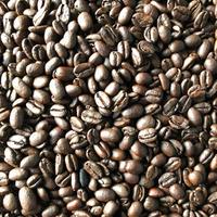 【カフェインレス】DECAF / Ethiopia 200g