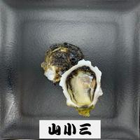 みじょか岩牡蠣(長崎)