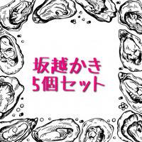 坂越かき(兵庫)5個セット