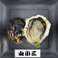 五島列島岩かきS(長崎)