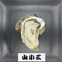 仙鳳趾S(北海道)