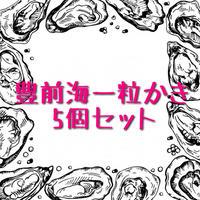 豊前海一粒かき(福岡)5個セット