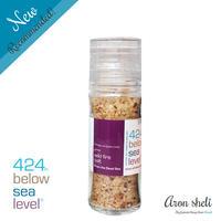 424 Below Sea Level Salt【ワイルドファイヤーソルト】
