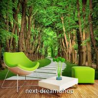 3D 壁紙 1ピース 1㎡ 自然風景 森林の景色 散歩道 インテリア 装飾 寝室 リビング h02328