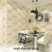 3D 壁紙 53×1000㎝ LOVE ロゴ 英語 DIY 不織布 カビ対策 防湿 防水 吸音 インテリア 寝室 リビング h02004