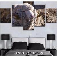 【お洒落な壁掛けアートパネル】 枠付き5点セット 雄羊 動物写真 ひつじ もこもこ ファブリックパネル インテリア m04658