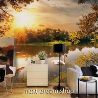 3D 壁紙 1ピース 1㎡ 自然風景 森林の池 白鳥 夕日 インテリア 装飾 寝室 リビング 耐水 防カビ h02408