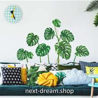 【ウォールステッカー】壁紙 DIY 部屋装飾 寝室 リビング インテリア 50×70cm 観葉植物 南国 緑 m02232