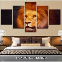 【お洒落な壁掛けアートパネル】 枠付き5点セット ライオン 獅子 LION 絵画 ファブリックパネル インテリア m04568