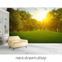 3D 壁紙 1ピース 1㎡ 自然風景 写真 森 草原 日光 太陽の日差し 癒し効果 リビング 客室 m03340