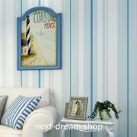 3D 壁紙 53×1000㎝ ストライプ 縦縞 DIY 不織布 カビ対策 防湿 防水 吸音 インテリア 寝室 リビング h02055