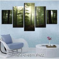 【お洒落な壁掛けアートパネル】 5点セット 森林 マイナスイオン 自然風景 陽の光 ファブリックパネル インテリア m04862