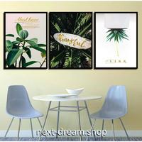 お洒落な壁掛けアートパネル 枠付き3点セット / 各15×20cm 熱帯雨林植物 自然写真 ポスター 絵画 ファブリックパネル m03432
