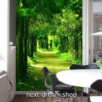 3D 壁紙 玄関用 1ピース 1㎡ 自然風景 森林 グリーン インテリア 装飾 部屋 耐水 防湿 耐衝撃 騒音吸収 h02798