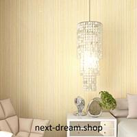3D 壁紙 53×1000㎝ ストライプ 無地 DIY 不織布 カビ対策 防湿 防水 吸音 インテリア 寝室 リビング h02095