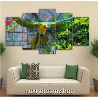 【お洒落な壁掛けアートパネル】 枠付き5点セット オウム 写真 鳥 カラフル ファブリックパネル インテリア m04645