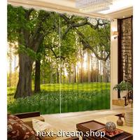 3D 遮光カーテン 203×213cm サイズ多数◎ 森林 自然風景 太陽 DIY おしゃれ 模様替 寝室 リビング 子供部屋 オフィス 店舗用  m01732