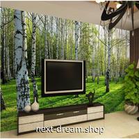 3D壁紙 1ピース 1㎡ 自然風景 白樺林 癒し キッズルーム インテリア 寝室 リビング ショップ 耐水 防カビ m04334