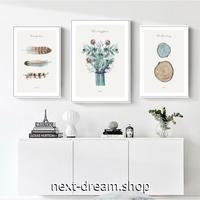 お洒落な壁掛けアートパネル3点セット (枠なし)/ 羽根 植物 アート 50×70cm(各) ポスター 絵画 インテリア m03241