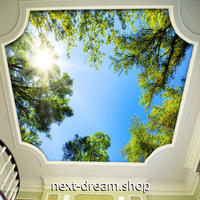 3D 壁紙 1ピース 1㎡ 自然風景 青空 太陽 新緑 天井用 インテリア 装飾 寝室 リビング 耐水 防湿 h02653