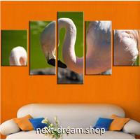 【お洒落な壁掛けアートパネル】 枠付き5点セット ピンクフラミンゴ 動物写真 ファブリックパネル インテリア m04594