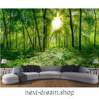 3D壁紙 1ピース 1㎡ 自然風景 森林 差し込む太陽の光 インテリア 寝室 リビング ショップ 耐水 防カビ m04342