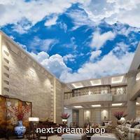 3D 壁紙 1ピース 1㎡ 自然風景 青い空と白い雲 天井用 インテリア 装飾 寝室 リビング 耐水 防湿 h02661