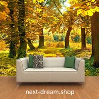 3D 壁紙 1ピース 1㎡ 自然風景 並木道 黄色 メープルの木 インテリア 装飾 寝室 リビング h02204