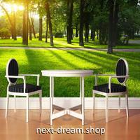 3D 壁紙 1ピース 1㎡ 自然風景 公園 散歩道 芝生 インテリア 装飾 寝室 リビング 耐水 防カビ h02438