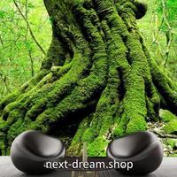 3D 壁紙 1ピース 1㎡ 自然風景 森林 大樹 インテリア 装飾 寝室 リビング 耐水 防カビ h02384