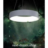 ペンダントライト 照明 LED リング型 60cm ダイニング リビング キッチン 寝室 北欧モダン h01573