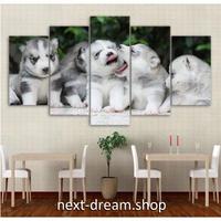 【お洒落な壁掛けアートパネル】 枠付き5点セット ハスキー 子犬 可愛い ファブリックパネル インテリア m04610