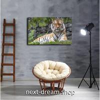 【お洒落な壁掛けアートパネル】 枠付き 40×60cm 虎 迫力 タイガー 写真 絵画 部屋 インテリア m06322