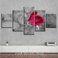 【お洒落な壁掛けアートパネル】 5点セット バラ モノクロ写真に赤 フラワーフォト 絵画 ファブリックパネル インテリア m04074