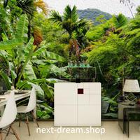3D 壁紙 1ピース 1㎡ 自然風景 トロピカル ココナッツの葉 ジャングル インテリア 装飾 寝室 リビング h02190