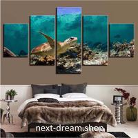 【お洒落な壁掛けアートパネル】 枠付き5点セット ウミガメ 海中 自然風景 ファブリックパネル インテリア m04571