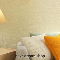 3D 壁紙 53×1000㎝ モダン シンプル 無地 DIY 不織布 カビ対策 防湿 防水 吸音 インテリア 寝室 リビング h02060