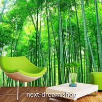 3D 壁紙 1ピース 1㎡ 自然風景 竹林 森 和テイスト インテリア 装飾 寝室 リビング h02256