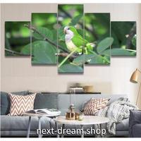 【お洒落な壁掛けアートパネル】 枠付き5点セット 野鳥 オウム 自然 写真 ファブリックパネル インテリア m04663