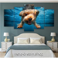 【お洒落な壁掛けアートパネル】 枠付き5点セット 犬 水中 おもしろ写真 ファブリックパネル インテリア m04611