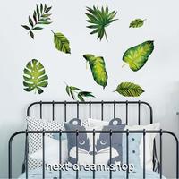 【ウォールステッカー】壁紙 DIY 部屋 装飾 寝室 リビング インテリア 50×70cm 観葉植物 葉っぱ イラスト m02269
