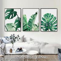 お洒落な壁掛けアートパネル 枠付き3点セット / 各15×20cm モンステラ 植物 緑 絵画 ファブリックパネル m03480