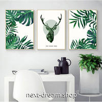 お洒落な壁掛けアートパネル3点セット (枠なし)/ モンステラ 植物 アート 50×70cm(各) ポスター 絵画 インテリア m03239