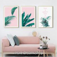 お洒落な壁掛けアートパネル3点セット (枠なし)/ 各30×40cm 植物 グリーン×ピンク 英語 ポスター 絵画 インテリア m03259